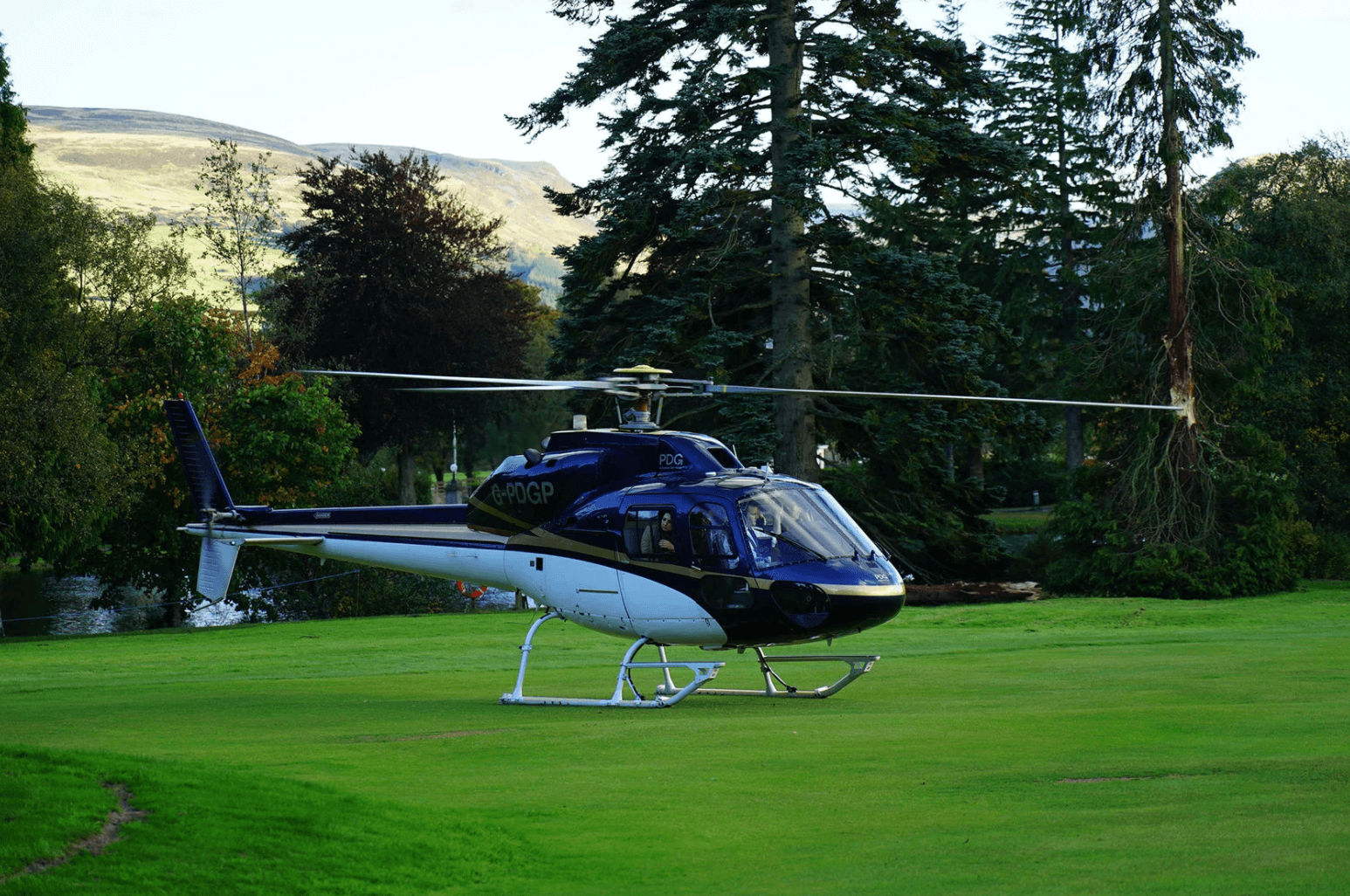 Helicopter on Lawn'